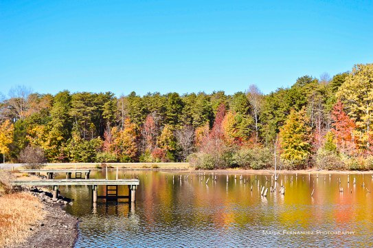 Autumn at Briery Creek